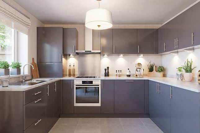 """4 bedroom terraced house for sale in """"Leven"""" at Whimbrel Way, Braehead, Renfrew"""