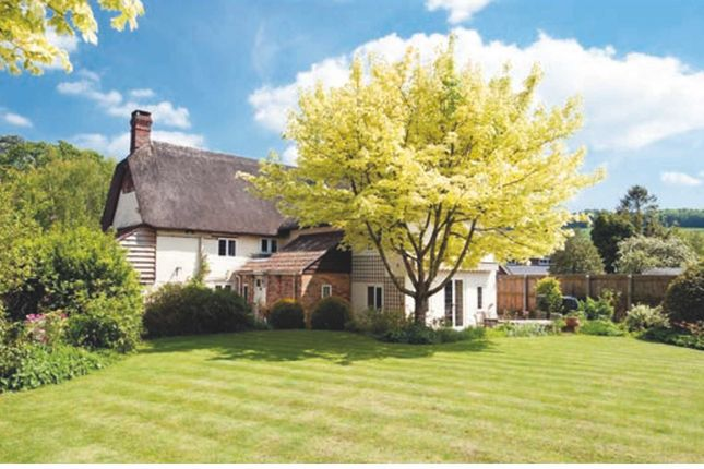 Thumbnail Detached house for sale in Old School Lane, Blandford Forum