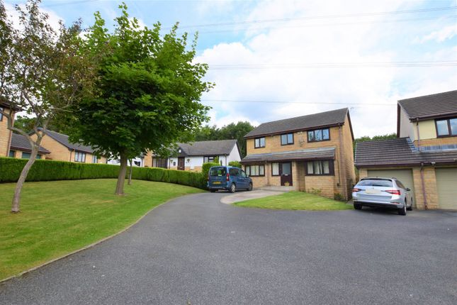 Thumbnail Detached house to rent in Park Hill, Huddersfield