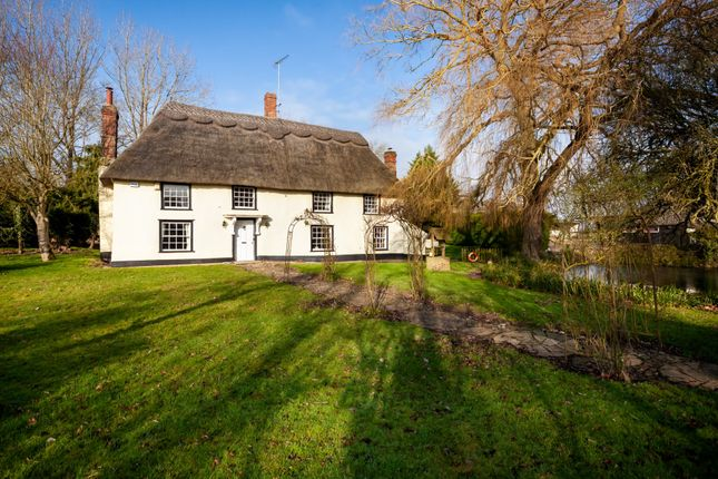 Thumbnail Detached house for sale in Farley Green, Newmarket