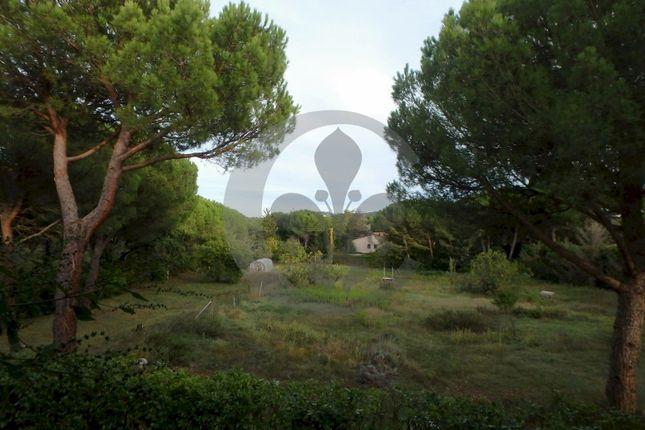 Garden  of Via Caduti Sul Lavoro 33, Pienza, Siena, Tuscany, Italy