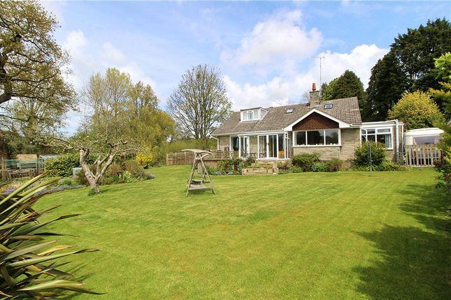 Thumbnail Detached house for sale in Oxbridge, Bridport
