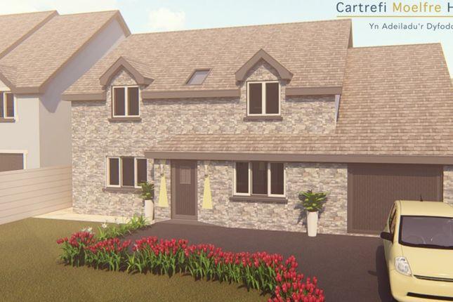 Thumbnail Detached house for sale in Clos Y Fedw, Rhydargaeau