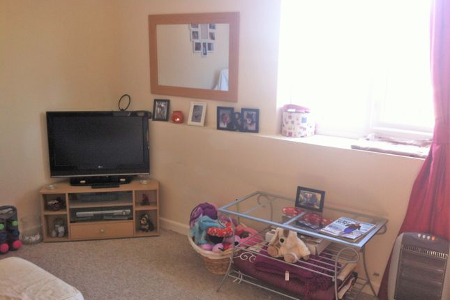Thumbnail Cottage for sale in Mount Pleasant Road, Re, Victoria Road, Torquay
