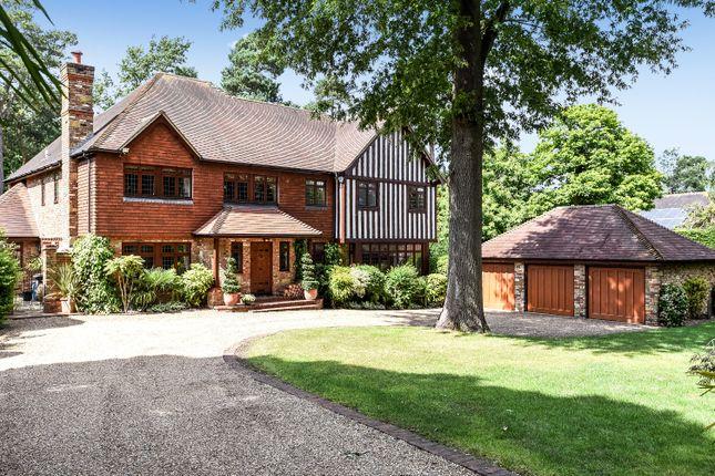 Thumbnail Detached house for sale in Springhurst Close, Croydon