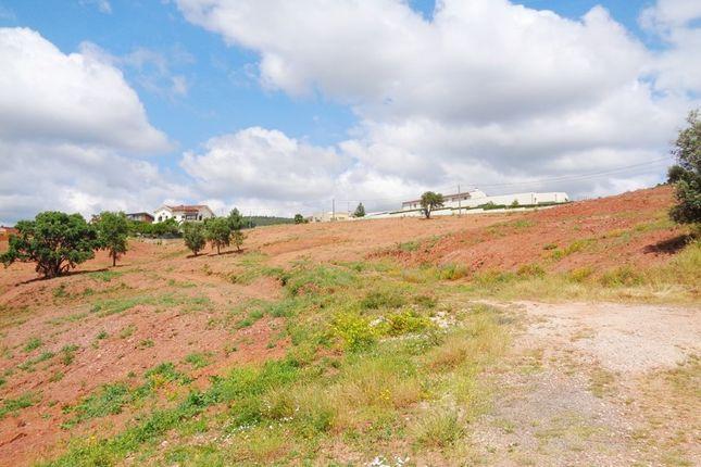 Thumbnail Land for sale in Porteladinha, Santo António Dos Olivais, Coimbra