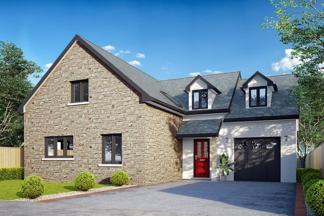 Thumbnail Property for sale in Pludds Meadow, Laugharne, Carmarthen