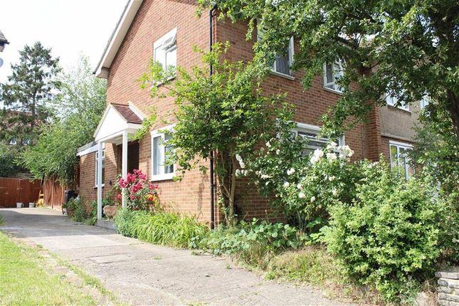 Thumbnail Semi-detached house for sale in Hornbeam Road, Buckhurst Hill