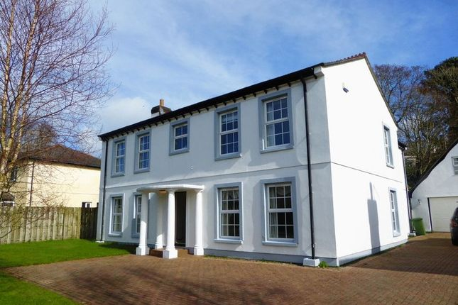 Thumbnail Detached house to rent in Glen Darragh Gardens, Glen Darragh Road, Glen Vine