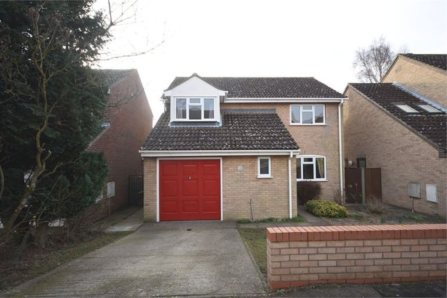 Thumbnail Detached house for sale in Lombardy Road, Sudbury, Suffolk