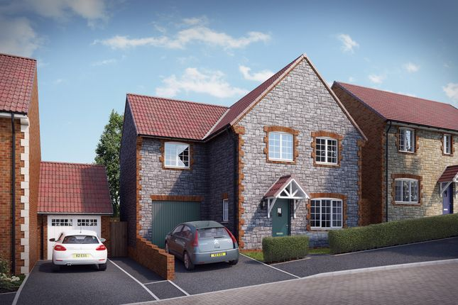 "Thumbnail Property for sale in ""The Monksfield"" at Knight Road, Wells"