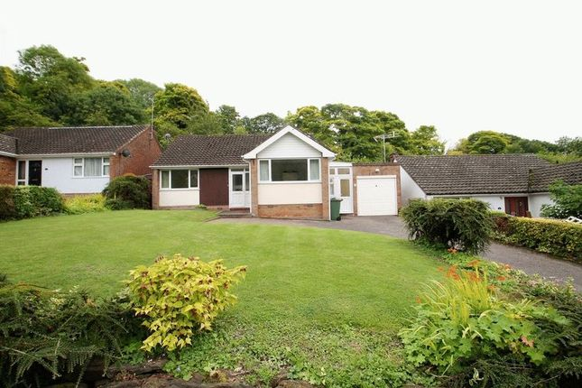 Thumbnail Bungalow for sale in Castle Close, Totternhoe, Bedfordshire