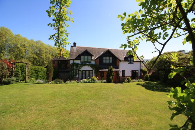 Thumbnail Barn conversion for sale in Fluxton, Ottery St. Mary