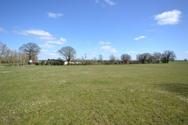 Thumbnail Land for sale in Carleton Rode, Norwich