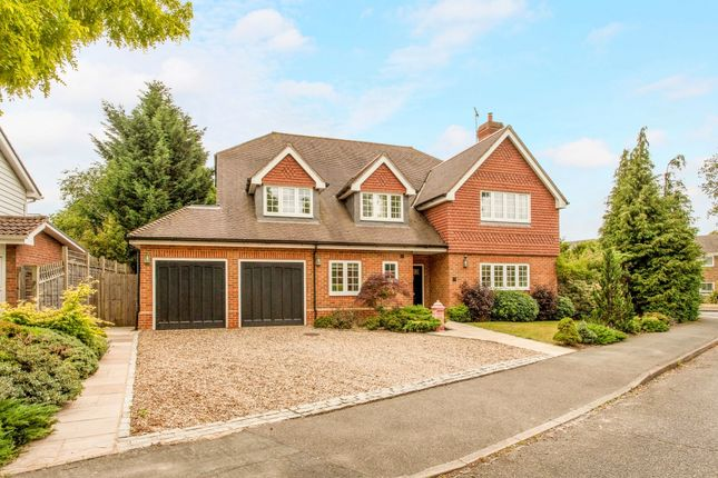 Thumbnail Detached house to rent in The Paddocks, Weybridge