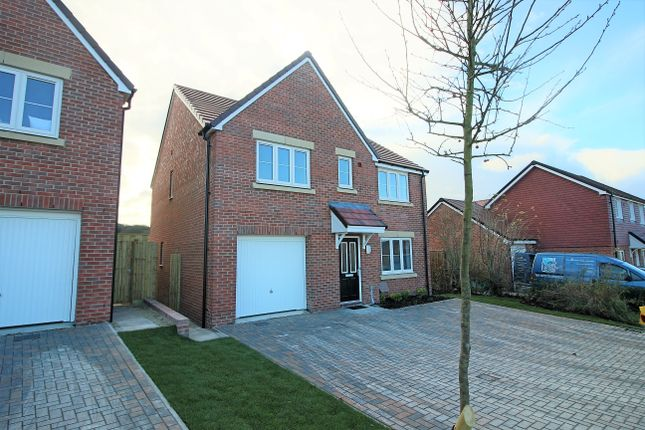Thumbnail Detached house to rent in Saddle Way, Picket Twenty, Andover