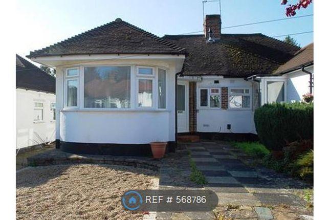 Thumbnail Bungalow to rent in Borkwood Way, Orpington