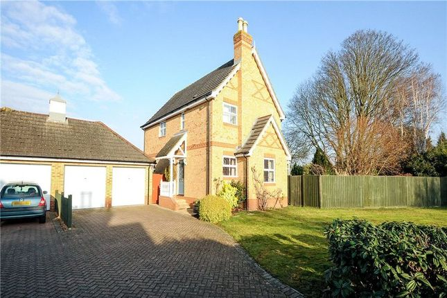 Thumbnail Detached house to rent in Thorpeside Close, Staines