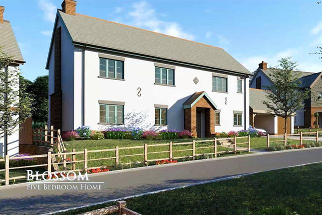 Thumbnail Detached house for sale in Rockbeare, East Devon, Devon