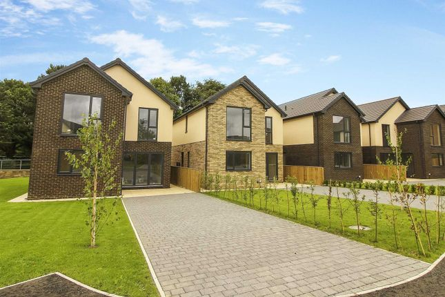 Thumbnail Detached house for sale in Beech Close, Seaton Delaval, Whitley Bay