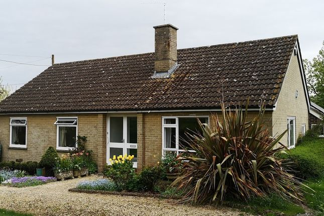Thumbnail Detached bungalow to rent in Church Hill, Marnhull, Sturminster Newton