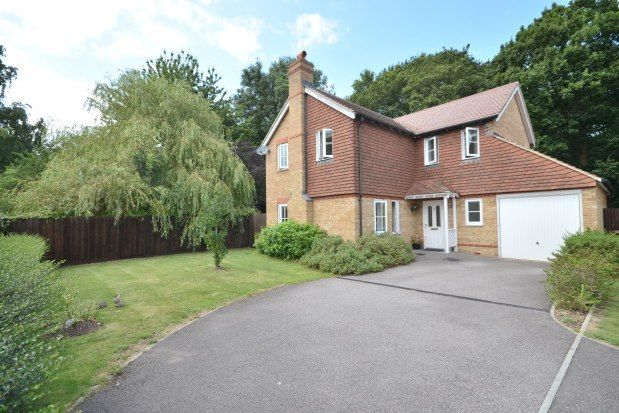 Thumbnail Detached house to rent in Willow Trees, Gillingham