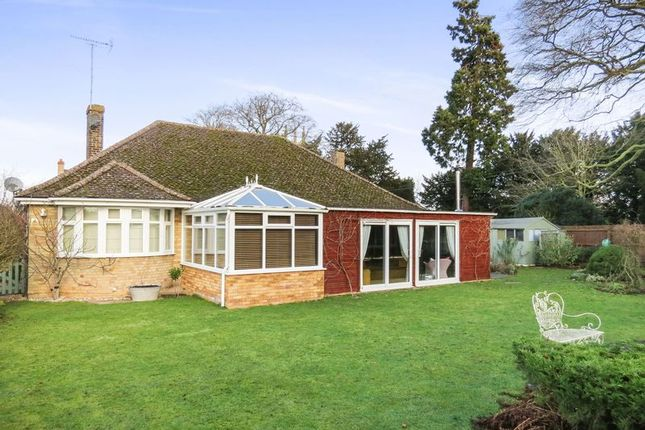 Thumbnail Detached bungalow for sale in High Street, Morton, Bourne