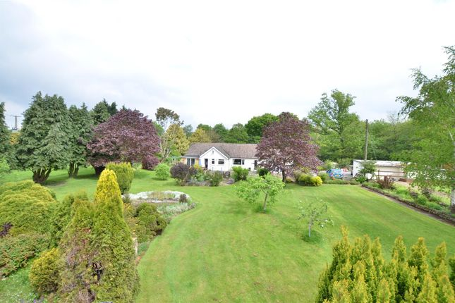 Thumbnail Equestrian property for sale in Pitt Road, Kingswood, Maidstone