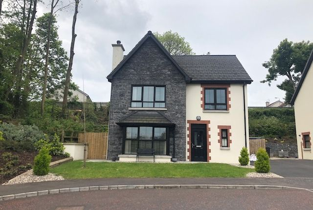 Thumbnail Detached house for sale in 3 Mill Meadows, Bessbrook