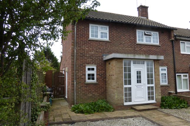 4 bed property to rent in Lime Avenue, Colchester
