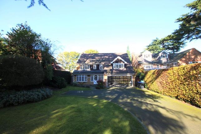 Thumbnail Detached house to rent in Pyrford Heath, Pyrford, Woking