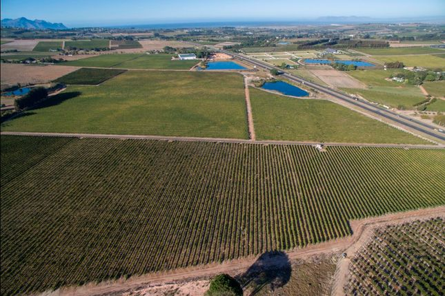 Thumbnail Farm for sale in R44, Stellenbosch, Cape Winelands, Western Cape, South Africa