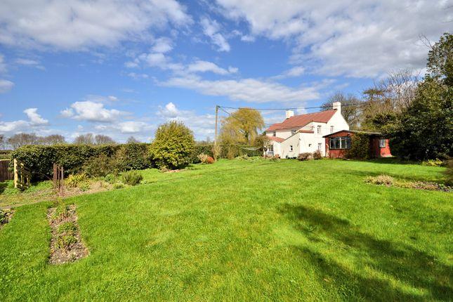 Thumbnail Cottage for sale in Birds Corner, Shipdham, Thetford