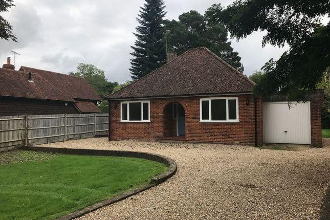 Thumbnail Detached bungalow to rent in Frog Grove Lane, Wood Street Village, Guildford