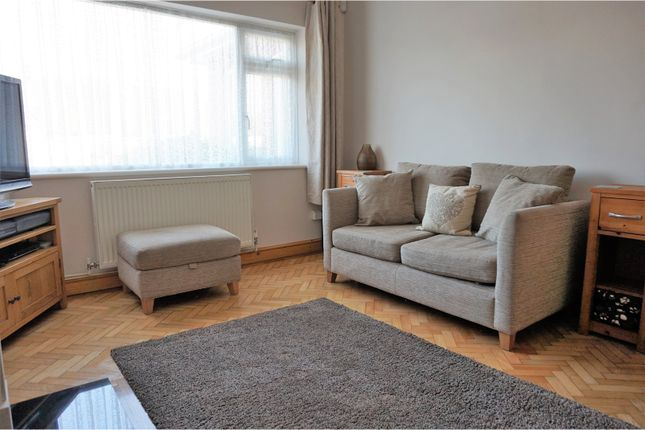 Thumbnail Bungalow for sale in Windlesham Close, Brighton