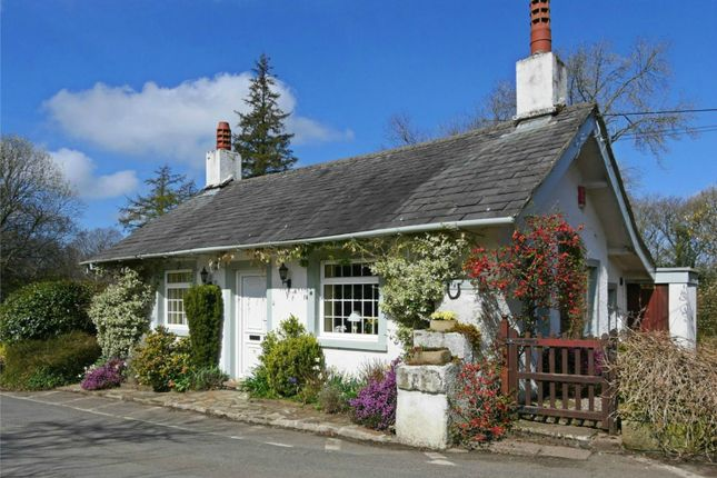 Thumbnail Cottage for sale in Force Bank, Santon Bridge, Holmrook, Cumbria