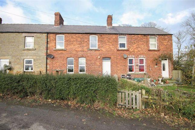 Cottage to rent in Norham, Berwick-Upon-Tweed