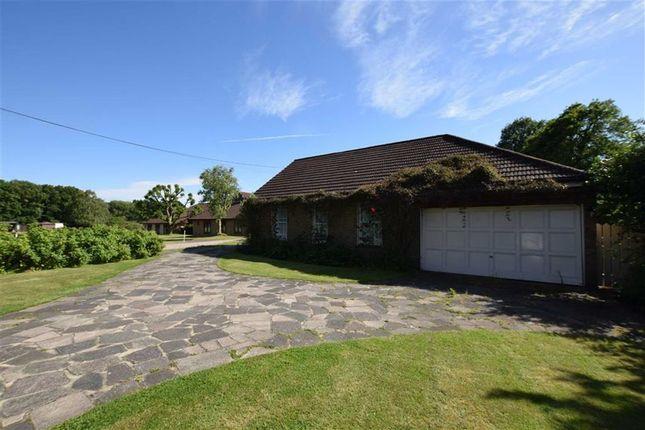 Thumbnail Detached bungalow for sale in Bramble Road, Benfleet, Essex