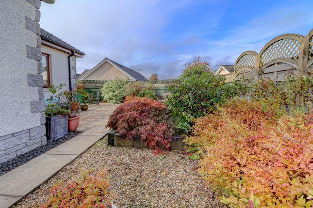 Rear Garden of Crosslaw Burn, Moffat DG10