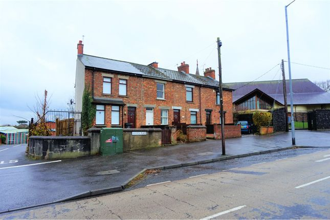 Thumbnail Terraced house for sale in Minorca Place, Carrickfergus