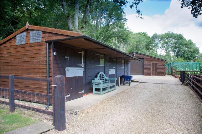 Stables/Barn of Parkwater Lane, Whiteparish, Salisbury SP5