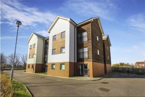 Thumbnail Flat to rent in Mindrum Terrace, North Shields