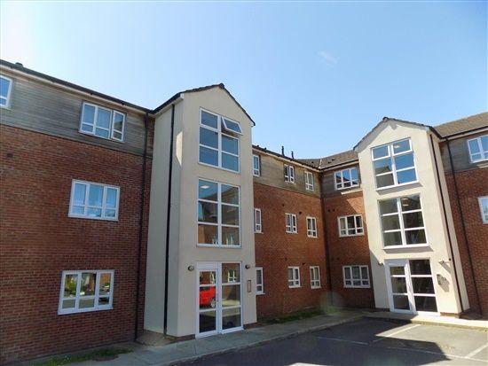 Thumbnail Flat to rent in Alder Grove, Ingol, Preston