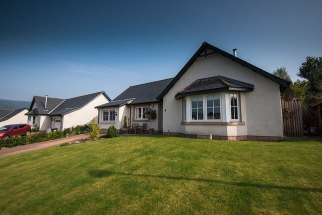 Thumbnail Bungalow for sale in Burns Brae, Aberfeldy, Perthshire