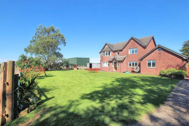 Thumbnail Detached house for sale in Halwill, Beaworthy
