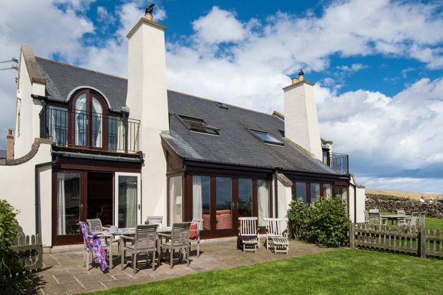 Thumbnail Semi-detached house for sale in Boatmans Place, Newton-By-The-Sea, Alnwick, Northumberland