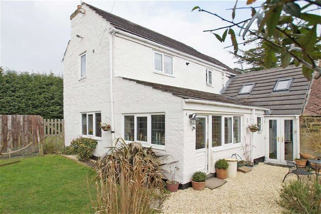 Thumbnail Detached house to rent in St Nicholas Road, Harrogate, North Yorkshire