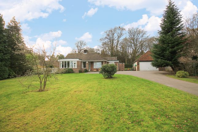 Thumbnail Detached bungalow for sale in Maresfield, Uckfield