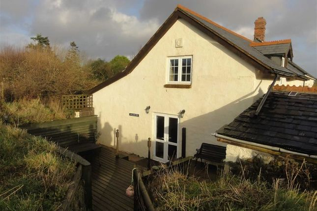 Thumbnail Semi-detached house to rent in Southmoor Farm, Pyworthy, Holsworthy, Devon