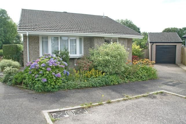 Thumbnail Bungalow for sale in Dunkeswell, Honiton, Devon